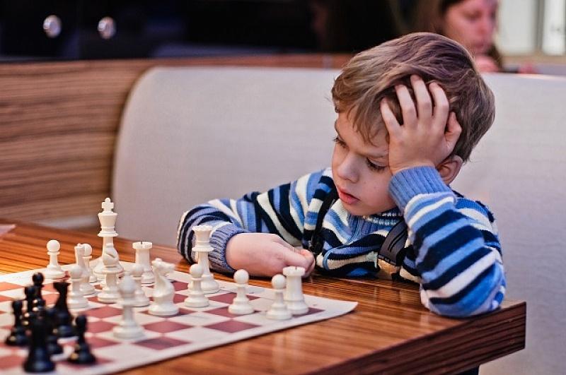 Скачать программе обучения шахматам детей
